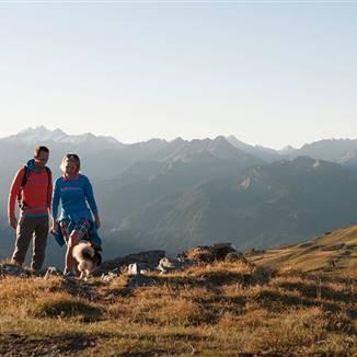 Urlaub mit Hund im Zillertal