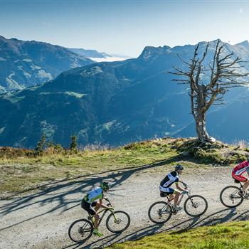 Three mountain bikers at the summit-climb
